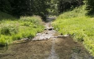 Rezerwat Dolina Eliaszówki