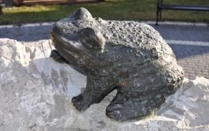 Skwer z żabą w Czatkowicach