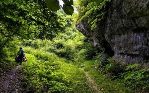 Dolina Dzwonek nad Żbikiem